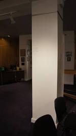 Mnohaya'lita Exhibit Lyceum 3D Synth Photographs (1000)
